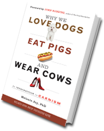 "Image of ""Why We Love Dogs"" book cover"