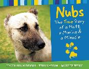 Nubs book cover