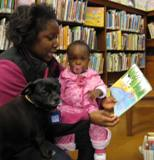 Ava the dog reading with a family