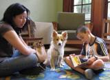 Photo of Bailey the dog reading with a boy at the library