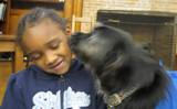 Photo of Buster giving a library patron a kiss
