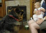 Photo of Dakota the dog and a baby making friends