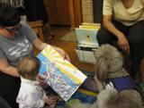 Photo of Ella the dog reading with a family at the library