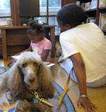 Photo of Ella the dog and a girl reading at the library