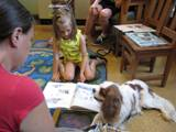 Photo of Fenway the dog reading with a girl at the library