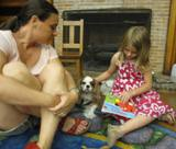 Photo of Fenway the dog and a girl reading