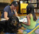 Photo of Happy the dog reading with a girl at the library