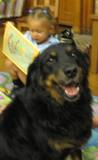 Photo of Happy the dog at the library