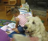 Photo of Harpo the dog and a girl reading at the library