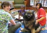 Photo of Kazzy the dog reading at the library