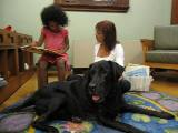 Photo of Kirby the dog listening to a story at the library