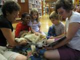 Photo of Leo the dog getting lots of attention at the library