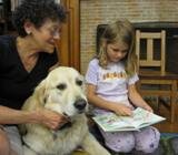 Photo of Leo the dog listening to a girl read at the library