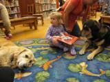 Photo of Leo the dog relaxing and listening at the library with friends