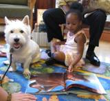 Pablo the dog reading with a girl at the library