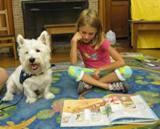 Photo of Pablo the dog and a girl reading at the library