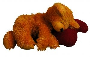 Sleeping teddy