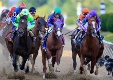 Preakness, stakes, horses