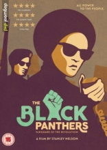 The Black Panthers movie poster.