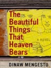 """The Beautiful Things That Heaven Bears"" by Dinaw Mengestu"
