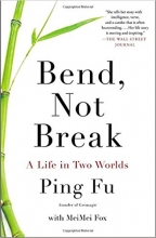 Biography of Ping Fu