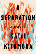 Image of A Separation book cover