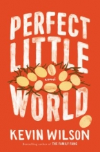 Image of Perfect Little World book cover