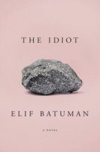 Image of The Idiot book cover