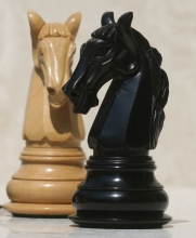 Image of Chess Pieces knights