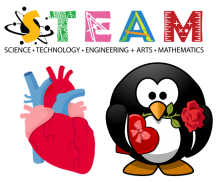 Image of STEAM graphic with an image of an anatomical human heart and a penguin giving Valentines
