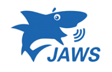 JAWS Graphic