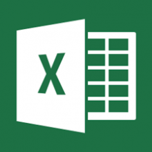 MS Excel 2013