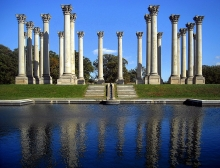 The columns at the National Arboretum
