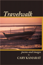 Travelwalk by Cary Kamarat