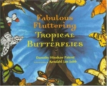 Fabulous fluttering tropical butterflies by Dorothy Hinshaw Patent