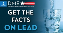 facts on lead image