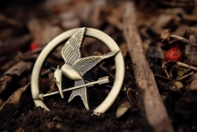 A Hunger Games Series Logo Lying in the Dirt