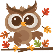 Owl with leaves