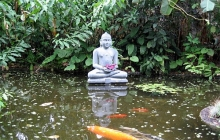meditating buddha statue in a pond