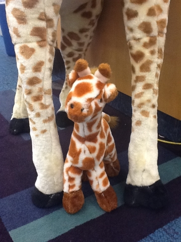 Baby Giraffe at home in the library