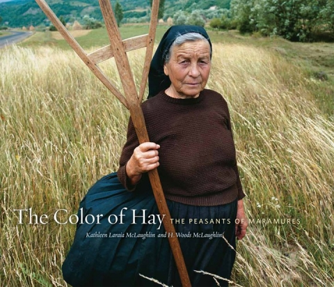Book Cover:  The Color of Hay