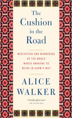 Cushion in the road book cover