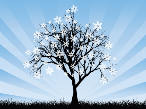 Image of tree with snowflakes