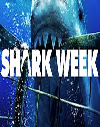 shark biting cage with word sharkweek going across