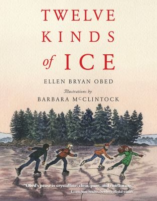 Twelve Kinds of Ice Book Cover