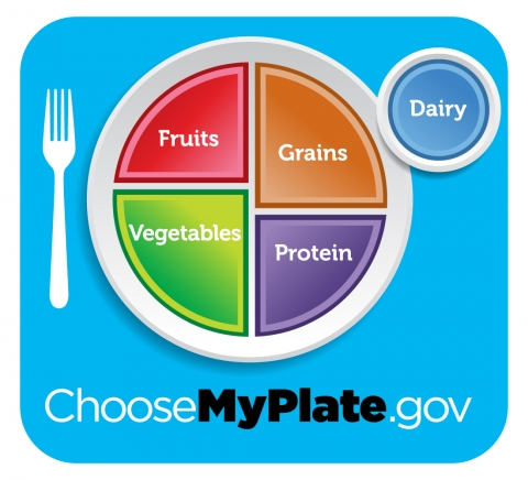 Image of a Healthy Plate
