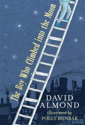 The Boy Who Climbed into the Moon book cover