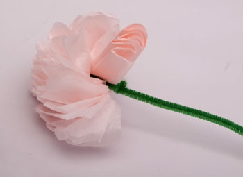 Example of a tissue paper flower