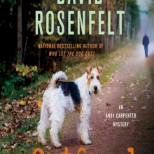 Outfoxed cover: A photo of a fox terrier turned toward the reader while standing on a dirt road in the Autumn. A shadowy figure is walking into the distance.