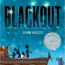 Cover Image for Blackout by John Rocco